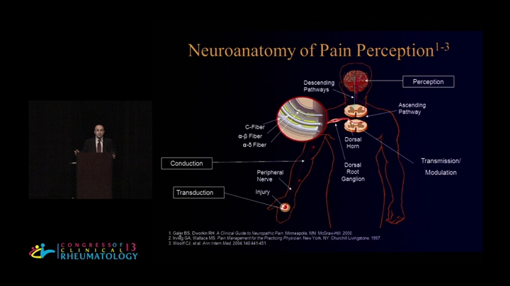 Acute Pain to Chronic Pain Pathophysiology